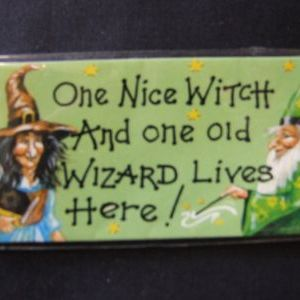One Nice Witch and One Old Wizard