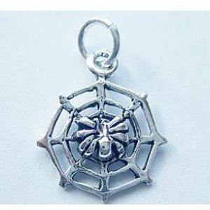 Spider and Web Charm / Pendant