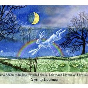 Luna Moon Hare at Spring Equinox